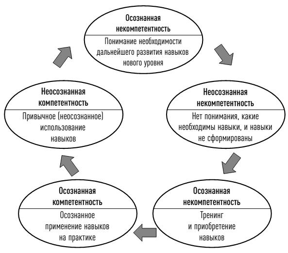 Цикл обучения Дэвида Колба: введение